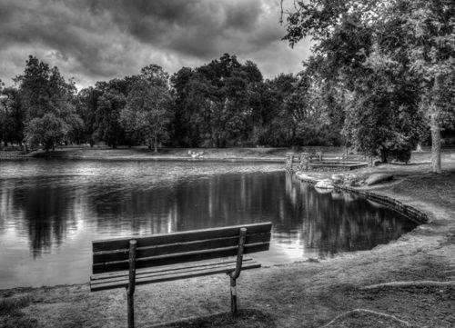 USA_Parks_Pond_Irvine_439240